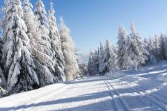 Χειμερινός δρόμος στα βουνά καλυμμένα φρέσκα δέντρα χι&omi Στοκ Φωτογραφία
