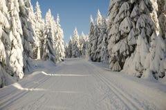 Χειμερινός δρόμος στα βουνά καλυμμένα φρέσκα δέντρα χι&omi Στοκ εικόνα με δικαίωμα ελεύθερης χρήσης