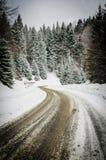 Χειμερινός δρόμος στα ξύλα Στοκ εικόνα με δικαίωμα ελεύθερης χρήσης
