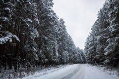 Χειμερινός δρόμος στο χιονώδες δασικό τοπίο στοκ εικόνες
