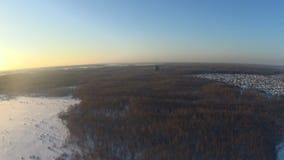 Χειμερινός τομέας και δασική εναέρια άποψη απόθεμα βίντεο