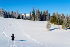 Χειμερινός τουρισμός στοκ εικόνες με δικαίωμα ελεύθερης χρήσης