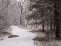 Χειμερινός χιονώδης δρόμος Στοκ Εικόνα