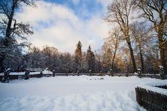 Χειμερινό δάσος στο χιόνι Στοκ εικόνα με δικαίωμα ελεύθερης χρήσης