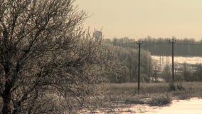 Χειμερινό δασικό τοπίο με ένα μπαλόνι που πετά χαμηλά απόθεμα βίντεο