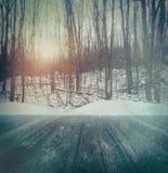 Χειμερινό δασικό υπόβαθρο Στοκ Εικόνες