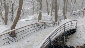 Χειμερινό δάσος, γέφυρα πέρα από τον ποταμό χιόνι ψυχρά παγωμένο πρωί απόθεμα βίντεο