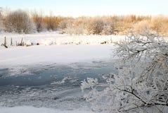 χειμερινό δάσος ποταμών Στοκ Φωτογραφίες