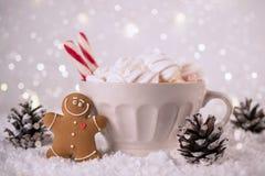 Χειμερινό ζεστό ποτό, κακάο με marshmallows και τα μπισκότα ατόμων μελοψωμάτων, πικάντικο καυτό εορταστικό υπόβαθρο σοκολάτας στοκ φωτογραφία με δικαίωμα ελεύθερης χρήσης