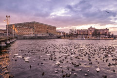 Χειμερινό ηλιοβασίλεμα στη Στοκχόλμη Στοκ Εικόνες