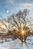 Χειμερινό ηλιοβασίλεμα στο πάρκο πόλεων Στοκ Φωτογραφία