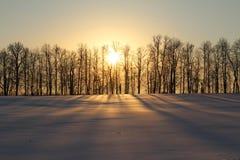 Χειμερινό ηλιοβασίλεμα Στοκ Εικόνες