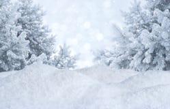 Χειμερινό θολωμένο περίληψη υπόβαθρο Παγωμένο τοπίο με τα πεύκα και snowdrifts Στοκ φωτογραφία με δικαίωμα ελεύθερης χρήσης