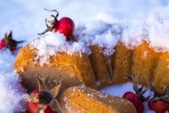 Χειμερινό κέικ με τα σκυλί-ροδαλά φρούτα στο χιόνι Στοκ φωτογραφία με δικαίωμα ελεύθερης χρήσης