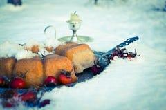 Χειμερινό κέικ Στοκ εικόνα με δικαίωμα ελεύθερης χρήσης