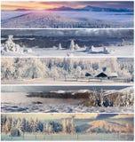 Χειμερινό κολάζ με το τοπίο Χριστουγέννων για τα εμβλήματα Στοκ Εικόνες