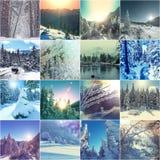 Χειμερινό κολάζ Στοκ εικόνες με δικαίωμα ελεύθερης χρήσης