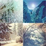 Χειμερινό κολάζ Στοκ εικόνα με δικαίωμα ελεύθερης χρήσης