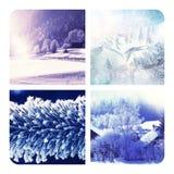Χειμερινό κολάζ Στοκ φωτογραφία με δικαίωμα ελεύθερης χρήσης