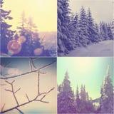 Χειμερινό κολάζ Στοκ Εικόνα