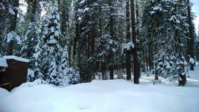 Χειμερινό κρησφύγετο στοκ εικόνα με δικαίωμα ελεύθερης χρήσης