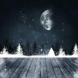 Χειμερινό μαγικό δάσος χιονιού στοκ φωτογραφία