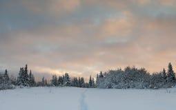Χειμερινό μονοπάτι στο ηλιοβασίλεμα στοκ φωτογραφία