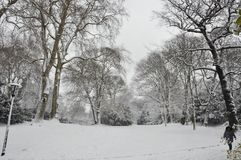 Χειμερινό πάρκο στην κεντρική πόλη Ντίσελντορφ Στοκ φωτογραφία με δικαίωμα ελεύθερης χρήσης
