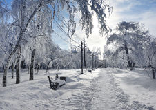 Χειμερινό πάρκο, τοπίο στοκ εικόνα με δικαίωμα ελεύθερης χρήσης