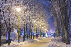 Χειμερινό πάρκο το βράδυ που καλύπτεται με το χιόνι Στοκ Εικόνες