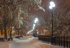 Χειμερινό πάρκο το βράδυ που καλύπτεται με το χιόνι Στοκ φωτογραφίες με δικαίωμα ελεύθερης χρήσης