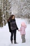 Χειμερινό πάρκο Στοκ εικόνα με δικαίωμα ελεύθερης χρήσης