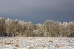 Χειμερινό παγωμένο ηλιόλουστο τοπίο Στοκ Φωτογραφία