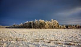 Χειμερινό παγωμένο ηλιόλουστο τοπίο Στοκ Εικόνα