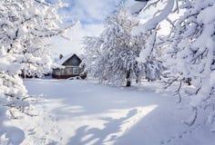 Χειμερινό παραμύθι, βαριές χιονοπτώσεις Στοκ Εικόνα