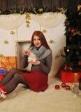 Χειμερινό παραμύθι πορτρέτου Χριστουγέννων Στοκ Εικόνες