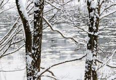Χειμερινό παραμύθι στο δάσος από τον ποταμό Στοκ φωτογραφία με δικαίωμα ελεύθερης χρήσης