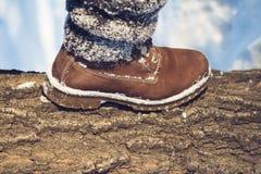 Χειμερινό πεζοπορώ στην αγριότητα Στοκ εικόνα με δικαίωμα ελεύθερης χρήσης