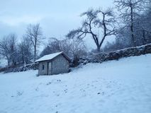 χειμερινό περιβάλλον Στοκ φωτογραφία με δικαίωμα ελεύθερης χρήσης