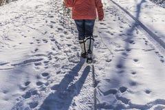 Χειμερινό περπάτημα στοκ εικόνες
