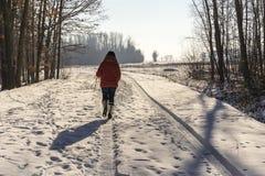 Χειμερινό περπάτημα στοκ εικόνες με δικαίωμα ελεύθερης χρήσης
