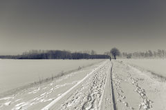 Χειμερινό περπάτημα Στοκ φωτογραφία με δικαίωμα ελεύθερης χρήσης