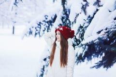 Χειμερινό πορτρέτο γυναικών στοκ εικόνες