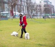 Χειμερινό πορτρέτο των σκυλιών περπατήματος εγκύων γυναικών στοκ φωτογραφία με δικαίωμα ελεύθερης χρήσης