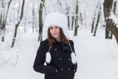Χειμερινό πορτρέτο Στοκ Εικόνες