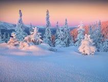 Χειμερινό πρωί στα βουνά Στοκ εικόνες με δικαίωμα ελεύθερης χρήσης