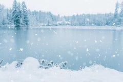 Χειμερινό σπίτι στο χιονώδες δάσος στη λίμνη Στοκ εικόνες με δικαίωμα ελεύθερης χρήσης