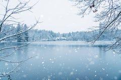 Χειμερινό σπίτι στο χιονώδες δάσος στη λίμνη Στοκ Εικόνες