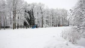 Χειμερινό τοπίο - ένα δάσος το χειμώνα - χιόνι στα δέντρα, θλιβερός ουρανός Καθαρισμός χιονιού σε ένα χειμερινό πάρκο φιλμ μικρού μήκους
