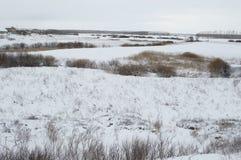 Χειμερινό τοπίο από τη Ρωσία Στοκ Φωτογραφία